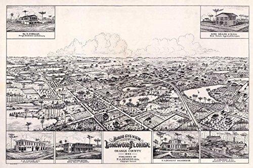 Bird's Eye View MAP of LONGWOOD Florida, Orange County circa 1885 - measures 24