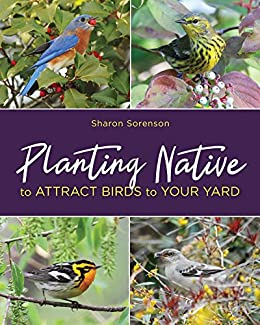 Planting Native to Attract Birds to Your Yard by [Sorenson, Sharon]