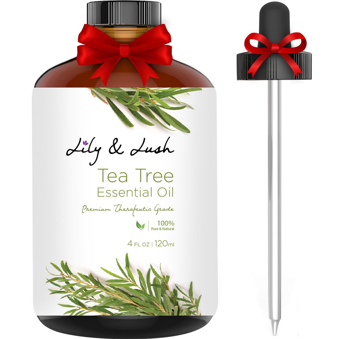 Lily & Lush XL Bottle 100% Pure Tea Tree Essential Oil | Undiluted, Therapeutic Grade | The Superior Choice for All Natural Acne Relief or to Purify, Cleanse & Renew I 4 fl oz w/Glass Dropper