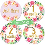 Baby Girl Monthly Milestone Stickers | Set of 20 Floral...