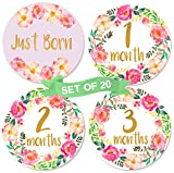 Baby Girl Monthly Milestone Stickers | Set of 20 Floral Gold Stickers | Birth to 12 Months + 8 Bonus Achievement Stickers | Best Baby Shower Gift