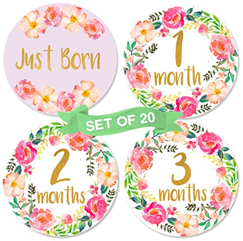 Baby Girl Monthly Milestone Stickers | Set of 20 Floral Gold Stickers | Birth to 12 Months + 8 Bonus Achievement Stickers | Baby Shower Gift for Baby Girl (Nova Baby Girls)