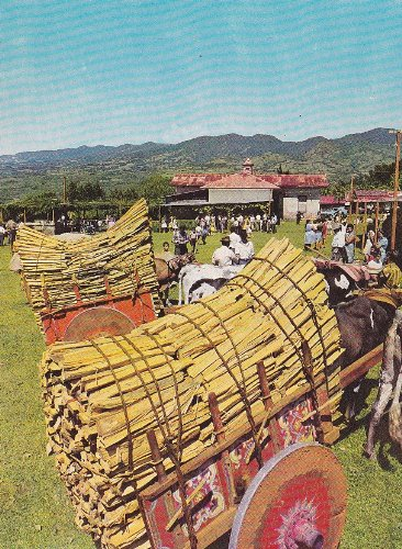 Costa Rica People taking items to the market to collect funds to contribute to the Catholic Church Postcard c1960-70 ()