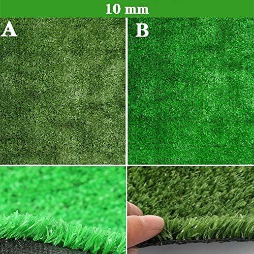 GAPING 人工芝人工芝カーペット高さ10mm壁、2色のランドスケープデコレーションをご用意 (Color : B, Size : 1x6m)