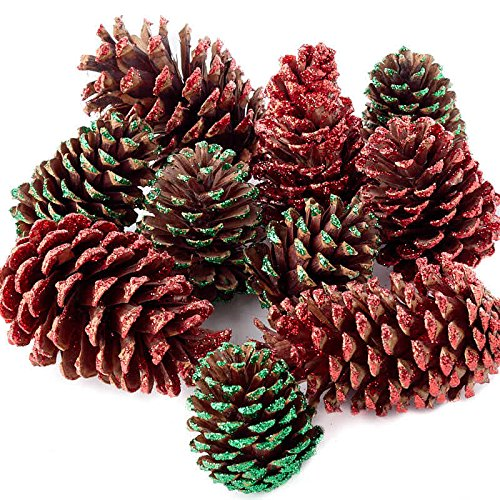 Factory Direct Craft Package of Assorted Size Red and Green Glitter Natural Pinecones