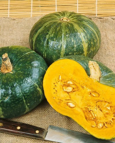 - Burgess Buttercup Winter Squash Seeds - Cucurbita Maxima - 4 Grams - Approx 24 Gardening Seeds - Vegetable Garden Seed