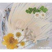 Taeyang 3Rd Album (White Night)