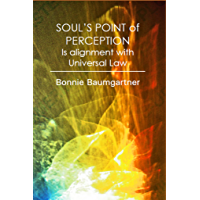 SOUL'S POINT of PERCEPTION: Is alignment with Universal Law (Spiritual Law Dark/Light Book 6)