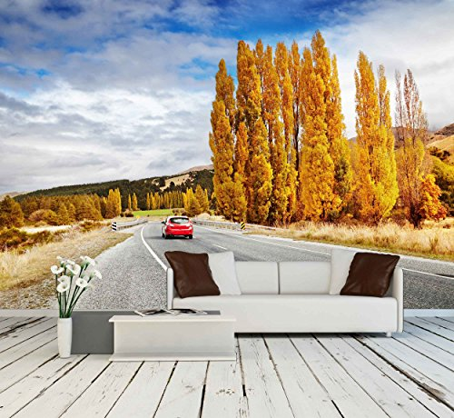 Autumn Landscape with Road and Red Car New Zealand