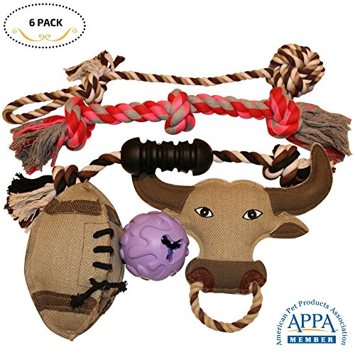 Dog Toys 6 Pcs Gift Set Variety Pack for Dogs Pet, Durable Teeth Cleaning Rope Chew Toys, Rubber Ball - Treat Dispensing Training Toy, Canvas Plush Squeaky, Nontoxic (Pack Durable)