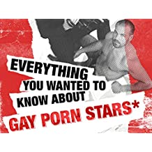 Everything You Wanted to Know About Gay Porn Stars but Were Afraid to Ask - Season 1