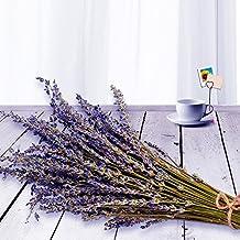 """EMISH Lavender Bundles, freshly harvested Real Natural Lavender bunch Royal Velvet Lavender Bundles for DIY Home Office Party Wedding Decor, 16""""-18"""" Long"""