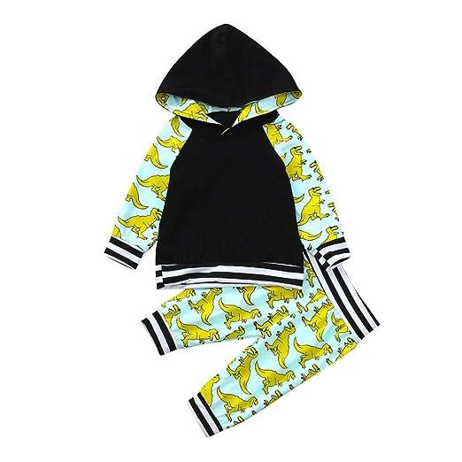 be14a3ad17f2 Amazon.com  Lavany Baby Boy Clothes Set Dinosaur Print 2PC Long ...