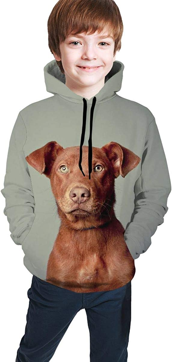 Lichenran Lovely Pit Bull Dog Men 3D Print Pullover Hoodie Sweatshirt with Front Pocket