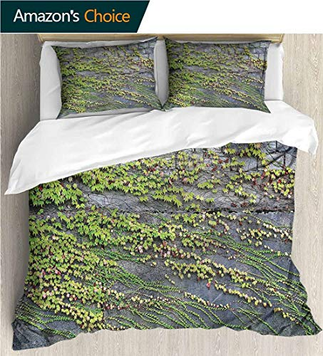 - VROSELV-HOME Full Queen Duvet Cover Sets,Box Stitched,Soft,Breathable,Hypoallergenic,Fade Resistant Bedding Set for Teen 3Pcs-Brick Wall Growing Creeper Plants (90