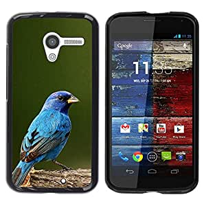 Cubierta protectora del caso de Shell Plástico    Motorola Moto X 1 1st GEN I XT1058 XT1053 XT1052 XT1056 XT1060 XT1055    Blue Spring Green Nature @XPTECH