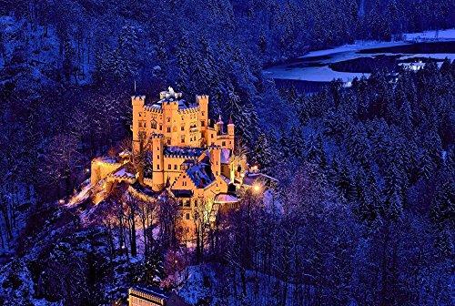(DZ.HAIKA Hohenschwangau Castle Trees Winter Snow - Natural Scenery Art Print Canvas Poster(16x24inch))