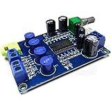 HiLetgo YDA138 2 * 10W デュアル チャンネル デジタル アンプ ボード パワーアンプモジュール DC 9-14V [並行輸入品]