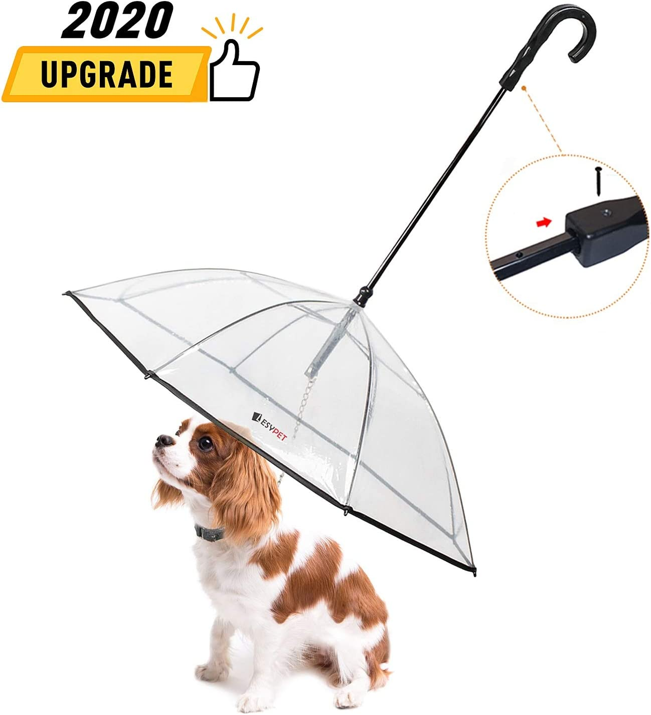 Best Dog umbrella with leash 1
