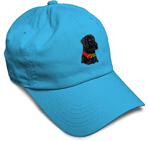 Custom Soft Baseball Cap Cat Doll Embroidery Dad Hats for Men /& Women