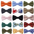 Tok Tok Designs® Handmade Men's Pre-Tied Bow Ties Collection