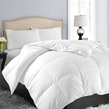 EASELAND All Season Queen Soft Quilted Summer Cooling Down Alternative Comforter Hotel Collection Reversible Duvet Insert Fill with Corner Ties,Warm Fluffy,White,88 by 88 Inches
