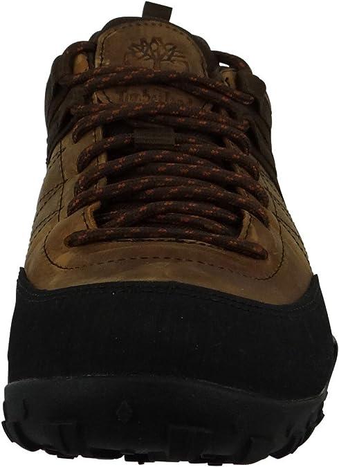 Timberland Greeley, Chaussures de randonnée à Tige Basse Homme