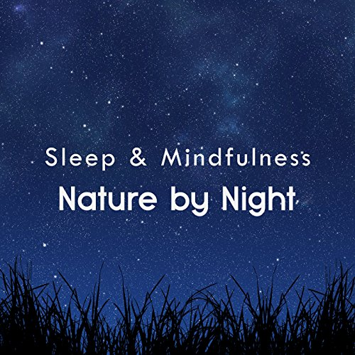 Nature Sleep and Relaxing Sounds, Pt. 213