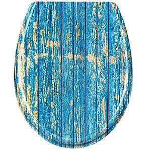 WC Sitz Holzoptik Blau Holzwand