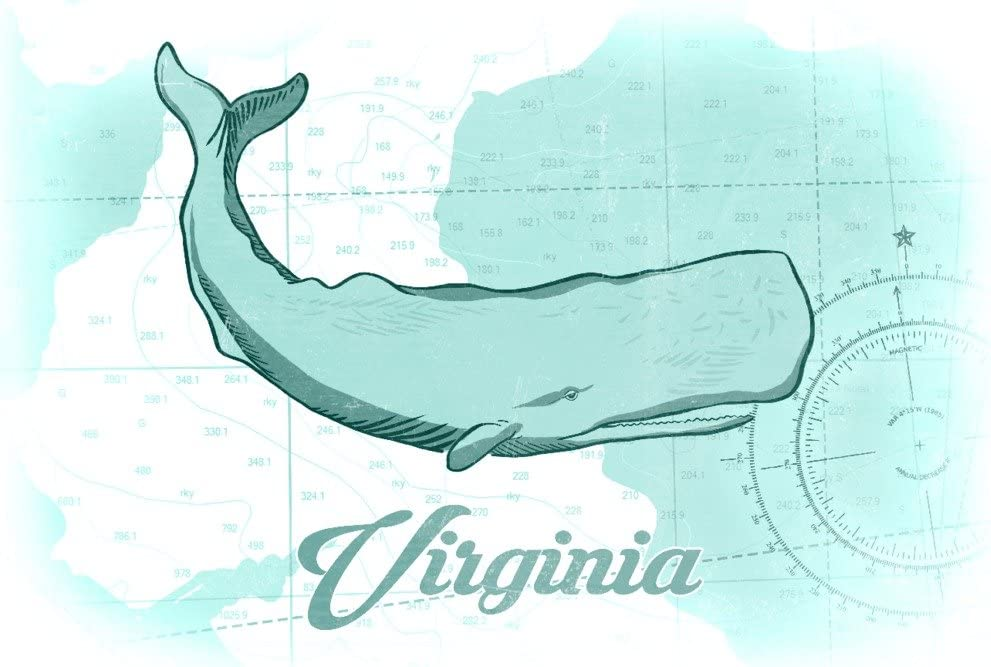 Whale Coastal Icon 36x54 Giclee Gallery Print, Wall Decor Travel Poster Virginia Teal