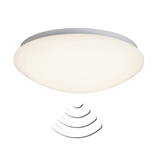 LED Fakir wall- and ceiling light 32cm white IP44