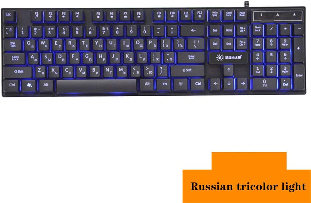 WANGJIANGLI Wired Gaming Keyboard Mechanical Feeling Backlit Keyboards USB 104 Keys Waterproof Computer Game Keyboards for Gamers and Typists,Russiantricolorlight