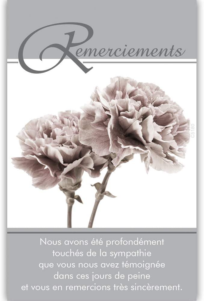 Pochette de 5 Cartes Sinc/ères Condol/éances Nos pens/ées affectueuses vous soutiennent dans lepreuve feuilles D/éc/ès Deuil Fabriqu/é en France