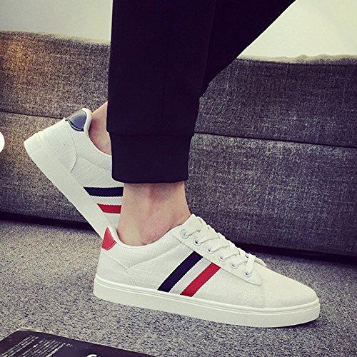 Men's Shoes Feifei Spring and Autumn Wear-Resistant Movement Leisure Low Help Canvas Shoes 2 Colours (Color : White, Size : EU/41/UK7.5-8/CN42)