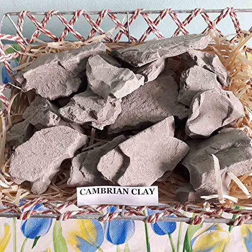 Cambrian Clay (4Oz) Edible Clay Chunks (lump) Natural for Eating (Food)