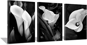 "Hardy Gallery Floral Artwork Flower Painting Picture: Calla-Lily Print on Canvas Set for Wall Art (16""x12""x3pcs)"