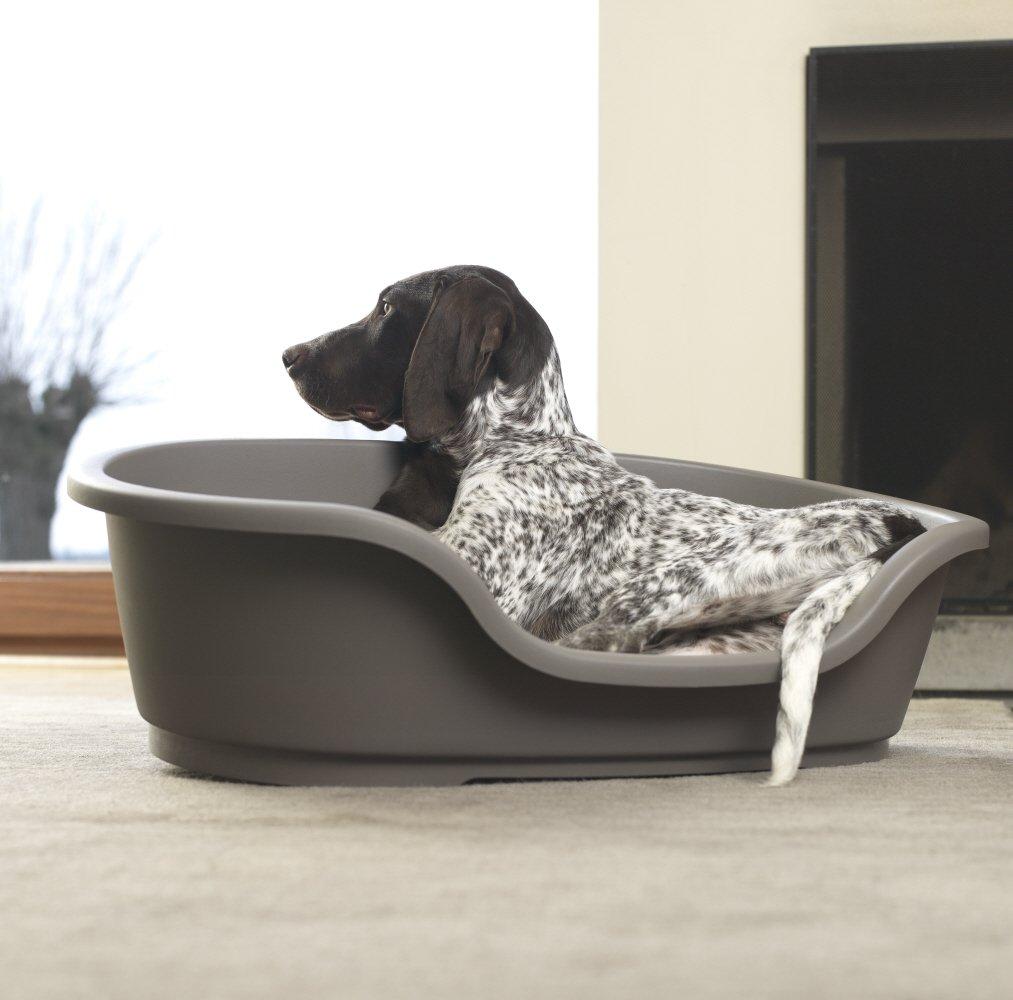 Canasto Cama plástico gigante para perro Talla 95 cm Interieur (110 cm exterior): Amazon.es: Productos para mascotas