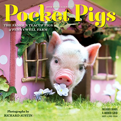 Book cover from Pocket Pigs Mini Wall Calendar 2019: The Famous Teacup Pigs of Pennywell Farm by Workman Publishing