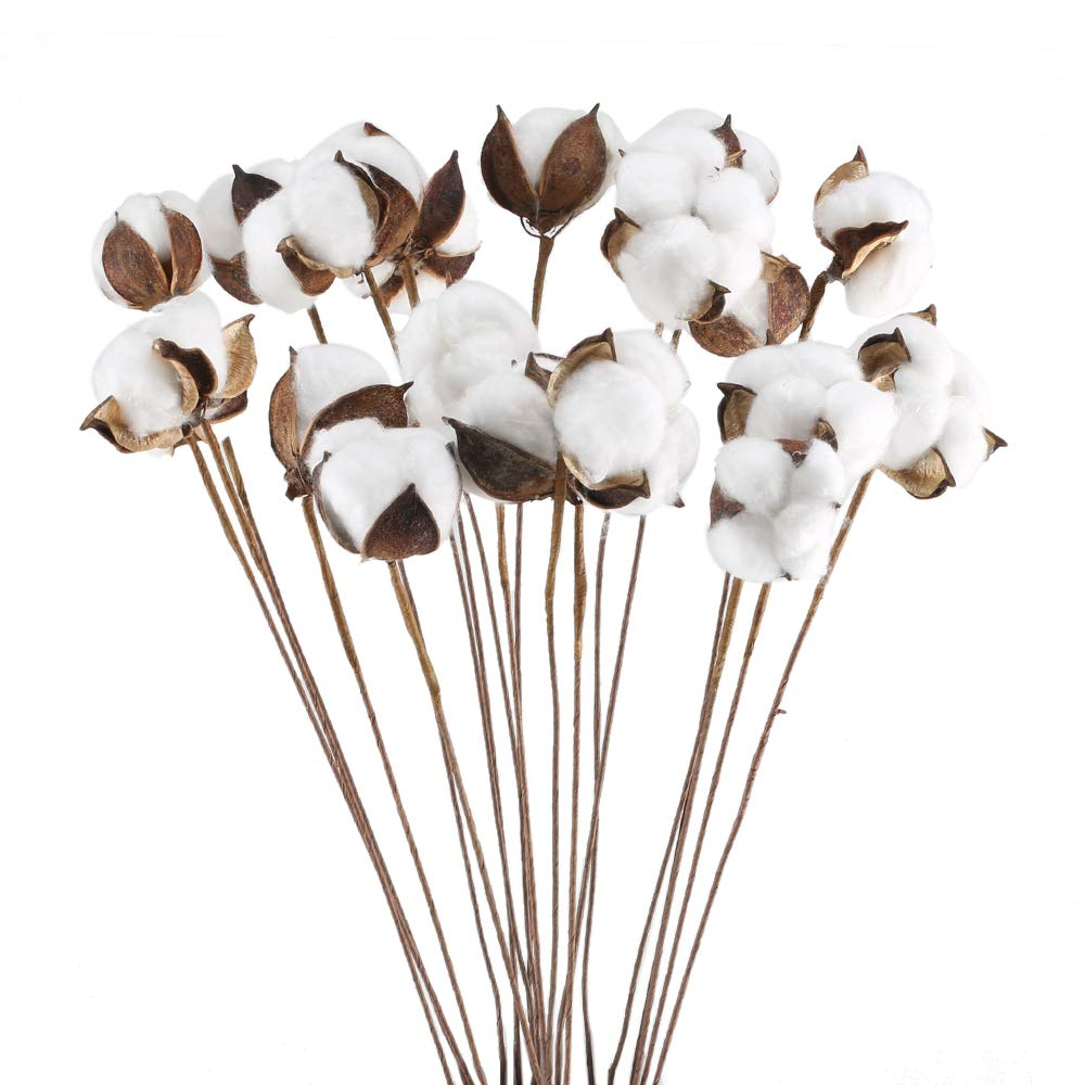 GTIDEA 20Pcs 23 inch Natural Dried Cotton Stem Farmhouse Artificial Flower Filler Floral Arrangement DIY Home Party Decor