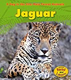 Jaguar (A Day in the Life: Rain Forest Animals)