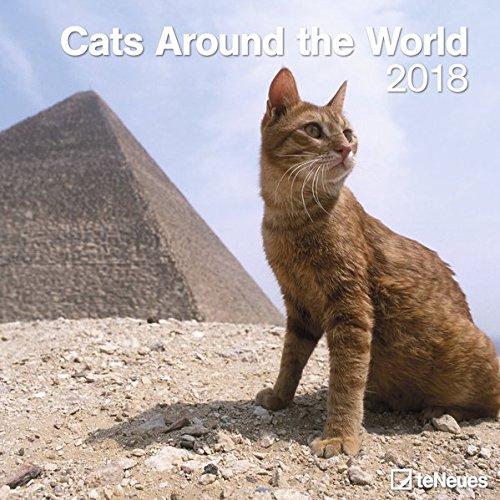Cats around the world 2018- Broschürenkalender, Katzenkalender, Tierkalender, Wandkalender  -  30 x 30 cm