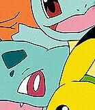 "Pokemon, Meet the Group Printed Fleece Throw, 45"" x 60"""