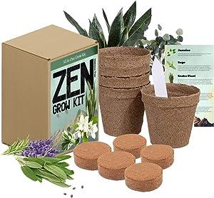 Zen Garden Grow Kit - Spirtual House Plants Healing Plant Grow Kit Gift - Grow Jasmine, Sage, Snake Plant, Eucalyptus, Sage Healing Feng Shui Plants Stress Free