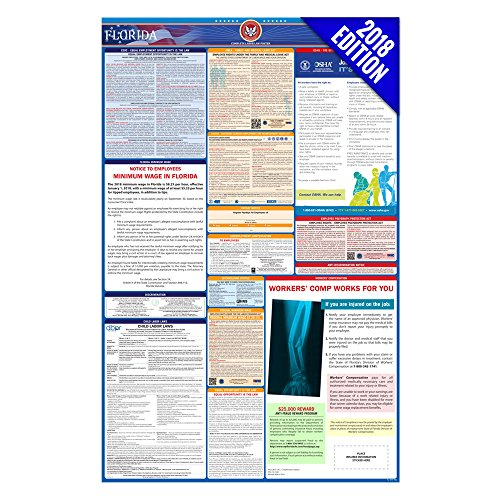 2018 Florida Labor Law Poster – State & Federal Compliant – Laminated (Minimum Wage Ca Poster)