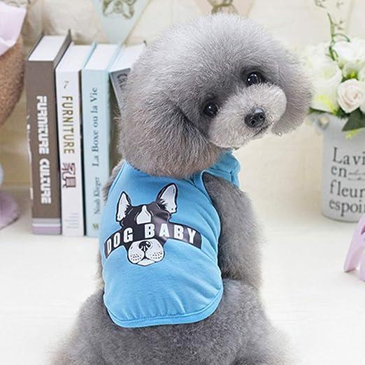 ZHAS Ropa para Perros de Moda Chaleco para Mascotas Camisa para Perros Disfraz Perro de Verano Chaleco para Mascotas Ropa para Perros Ropa para Mascotas Chihuahua Ropa para Perro: Amazon.es: Productos para
