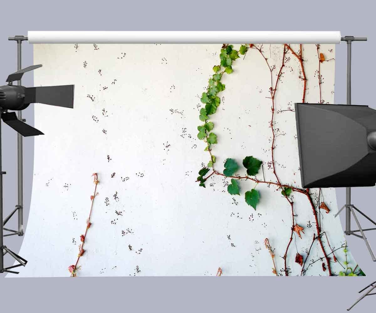FUERMOR Background 7/×5ft Green Leaves on White Wall Photography Backdrop Studio Photo Props PF016