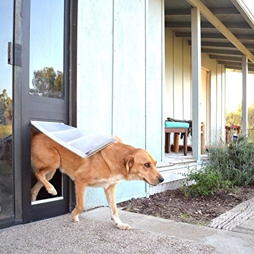 Best Dog Door Reviews And Buyers Guide 2018 Hellow Dog