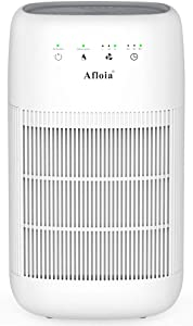 Afloia HEPA Air Purifier Dehumidifier in One, H13 HEPA Filter, Touch Control, Quiet Air Cleaner for Smokers, Allergies and Pets, Dehumidifier for 215 sq.ft. Room, Bedroom and Basements AQ10