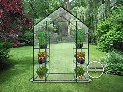 Compact Outdoor Seed Starter Greenhouse Cloche from King Service Holding Inc