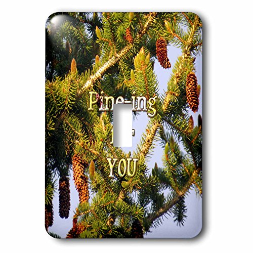 3dRose Jos Fauxtographee- Pine Tree - Pining for you written over a Pine Tree in PV UT - Light Switch Covers - single toggle switch (lsp_255943_1)